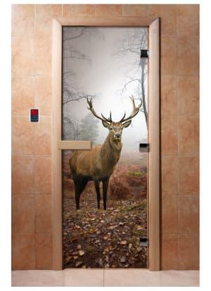 Дверь с фотопечатью A080